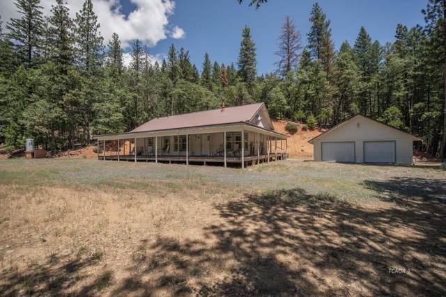 2875 Bear Creek Road, Weaverville, CA 96093 (MLS #19073148) :: Heidi Phong Real Estate Team