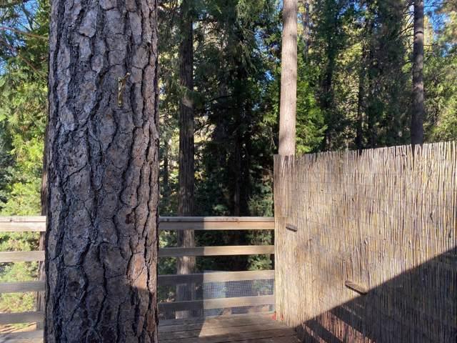 5772 Sierra Springs Court, Pollock Pines, CA 95726 (MLS #19073485) :: Folsom Realty