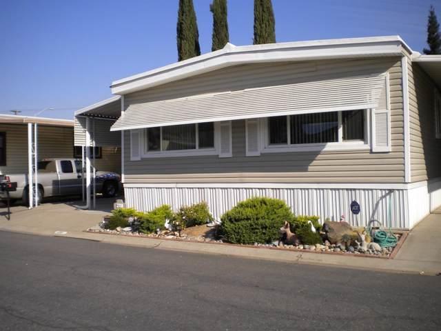 218 San Juan, Lodi, CA 95240 (MLS #19073828) :: REMAX Executive