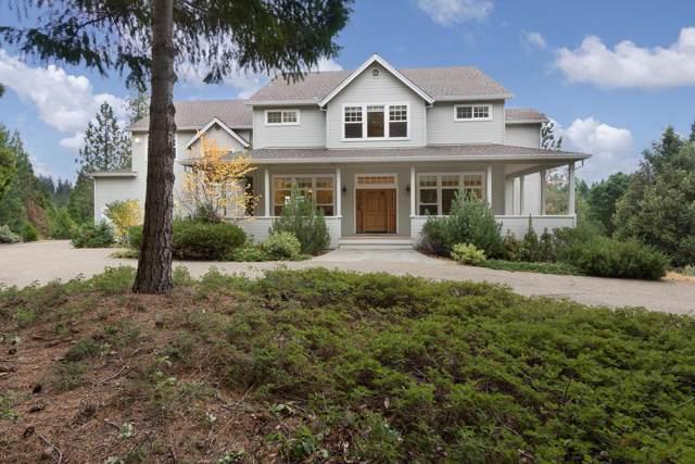 18100 Timberlin Drive, Pioneer, CA 95666 (MLS #19074723) :: The MacDonald Group at PMZ Real Estate