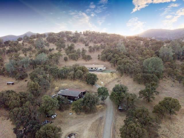6708 Riata Way, Angels Camp, CA 95222 (MLS #19074856) :: The Merlino Home Team