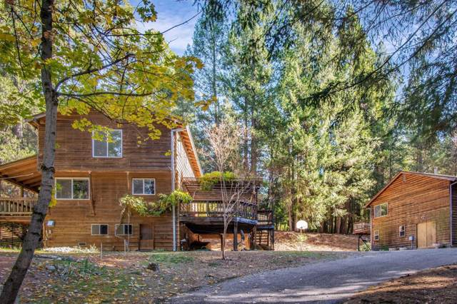 12151 Willow Valley Road, Nevada City, CA 95959 (MLS #19075381) :: Dominic Brandon and Team