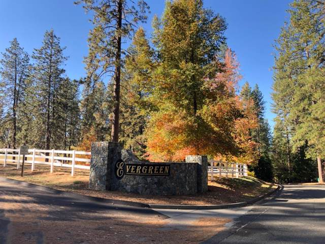 10279 Evergreen Ranch Court, Grass Valley, CA 95949 (MLS #19076024) :: REMAX Executive