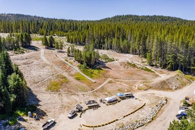 53010 Donner Pass Road, Soda Springs, CA 95728 (MLS #19076089) :: The MacDonald Group at PMZ Real Estate