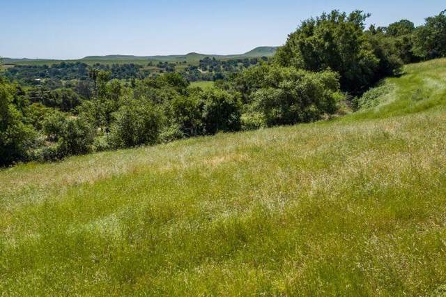 0 Frymire Road Lot 1, Oakdale, CA 95361 (#19076222) :: The Lucas Group