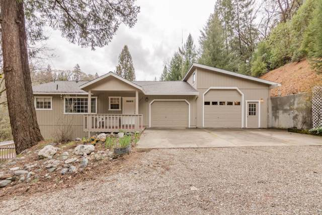 23649 Grand View Way, Colfax, CA 95713 (MLS #19076278) :: The Home Team