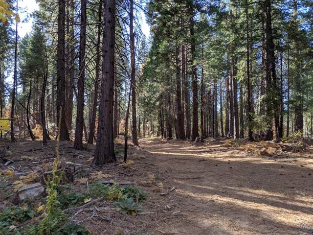 16506 Lowell Hill Road, Nevada City, CA 95959 (MLS #19076327) :: The MacDonald Group at PMZ Real Estate