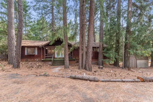 25215 Sugar Pine Drive, Pioneer, CA 95666 (MLS #19076339) :: Keller Williams Realty