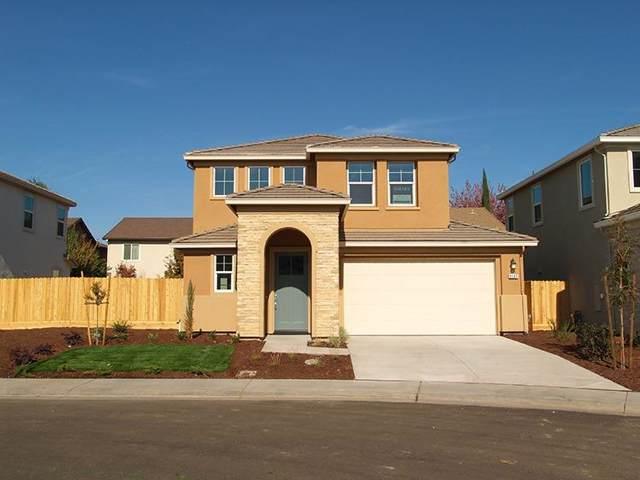 2257 S Sunny Island Court, Modesto, CA 95355 (MLS #19077018) :: The Merlino Home Team