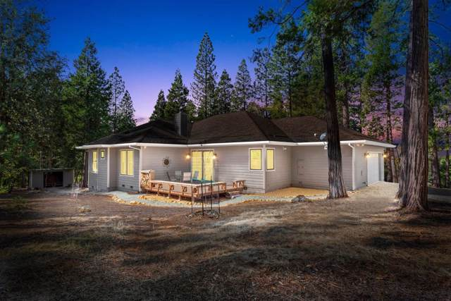 19005 E Pine Drive, Pioneer, CA 95666 (MLS #19077135) :: Keller Williams Realty