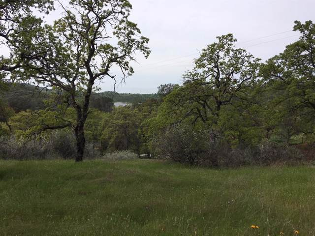 0-Lot 3 Abeto, La Grange, CA 95329 (MLS #19077247) :: Folsom Realty