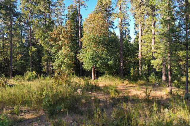 11356 Constitution Court, Nevada City, CA 95959 (MLS #19077495) :: The MacDonald Group at PMZ Real Estate