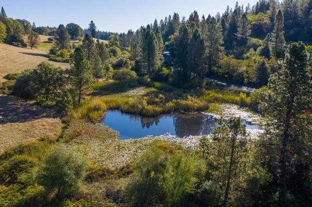 12435 Bitney Springs Road, Nevada City, CA 95959 (MLS #19077790) :: Dominic Brandon and Team