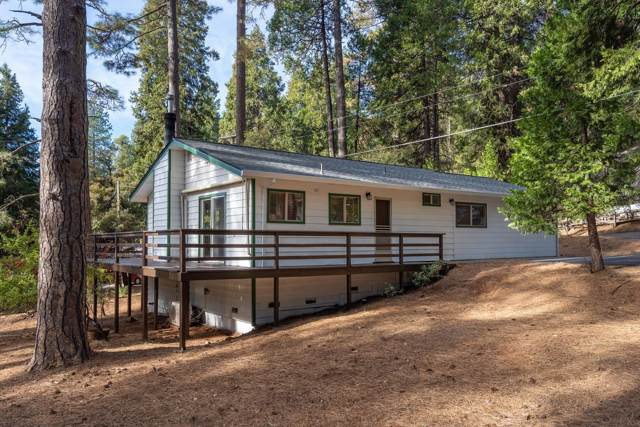 26302 Fawn Ct, Pioneer, CA 95666 (MLS #19077826) :: REMAX Executive