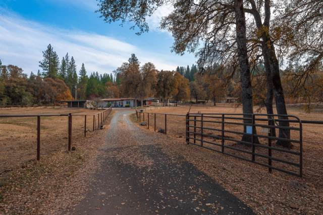 16602 Tyler Road, Fiddletown, CA 95629 (MLS #19077880) :: The MacDonald Group at PMZ Real Estate