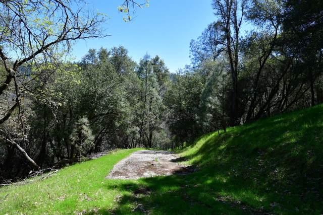 16524 Annie Drive, Grass Valley, CA 95949 (MLS #19078080) :: Dominic Brandon and Team