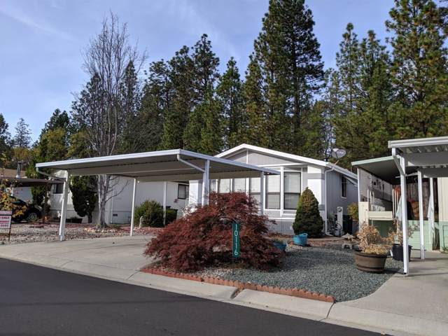 10124 Dalewood Way, Grass Valley, CA 95949 (MLS #19078127) :: Dominic Brandon and Team