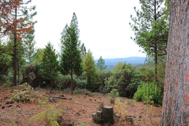 0 Mountain House, Camptonville, CA 95922 (MLS #19078148) :: eXp Realty - Tom Daves