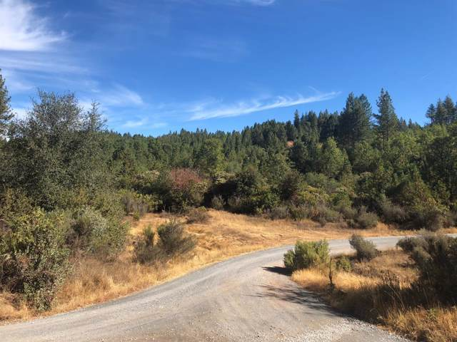 6220 Shoo Fly Road, Placerville, CA 95667 (MLS #19078548) :: eXp Realty - Tom Daves
