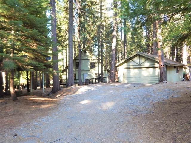 7120 Quietwood Drive, Grizzly Flats, CA 95636 (MLS #19078793) :: REMAX Executive