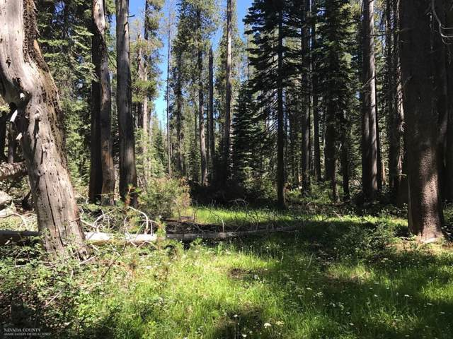 0 Donner Pass Road, Kingvale, CA 95728 (MLS #19078838) :: Dominic Brandon and Team