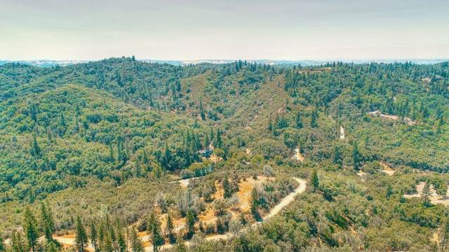 13900 Meath Drive, Sutter Creek, CA 95685 (MLS #19079036) :: Deb Brittan Team