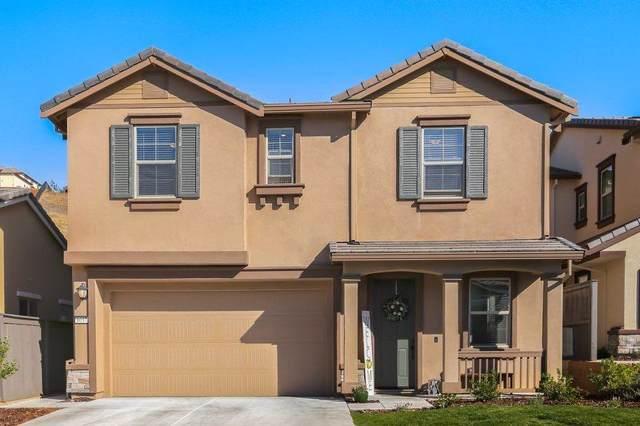 8037 Avanti Drive, El Dorado Hills, CA 95762 (MLS #19079170) :: The Merlino Home Team