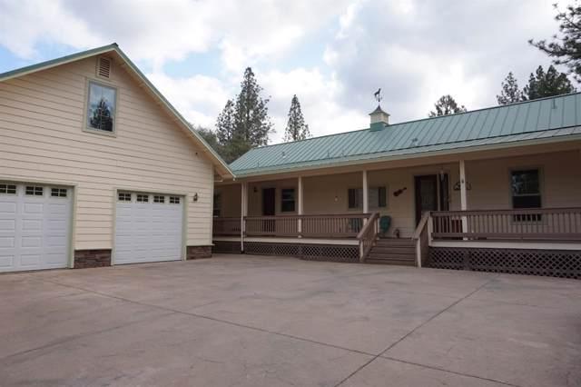 19851 Burnt Wheel Farm Road, Fiddletown, CA 95629 (MLS #19079203) :: Keller Williams - Rachel Adams Group