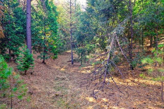 19080 Connie Dr, Grass Valley, CA 95949 (MLS #19079562) :: Dominic Brandon and Team