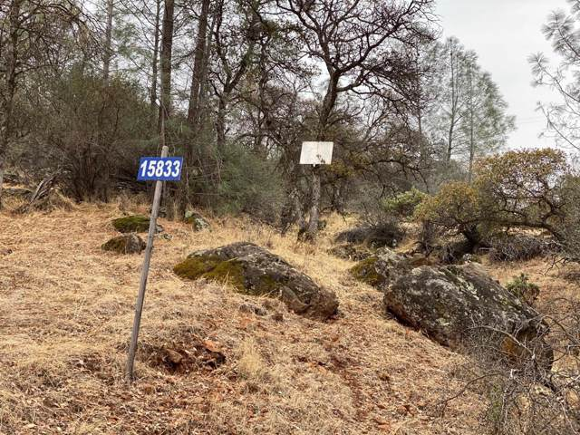 15833 Harley Court, Grass Valley, CA 95949 (MLS #19080257) :: REMAX Executive