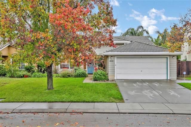 866 Ruess Road, Ripon, CA 95366 (MLS #19080370) :: REMAX Executive