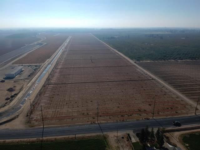 17374 E River Road, Ripon, CA 95366 (MLS #19080529) :: REMAX Executive