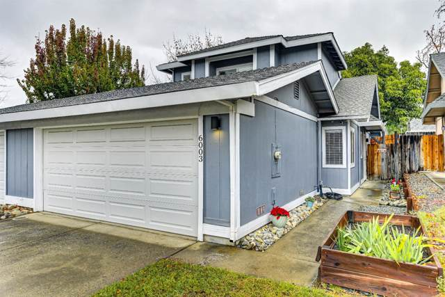 6003 Ogden Nash Way, Sacramento, CA 95842 (MLS #19080586) :: REMAX Executive
