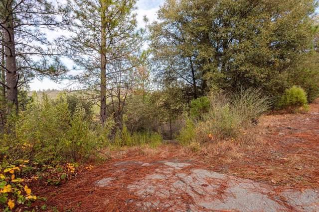 14141 Shake Ridge Road, Sutter Creek, CA 95685 (MLS #19080600) :: Heidi Phong Real Estate Team
