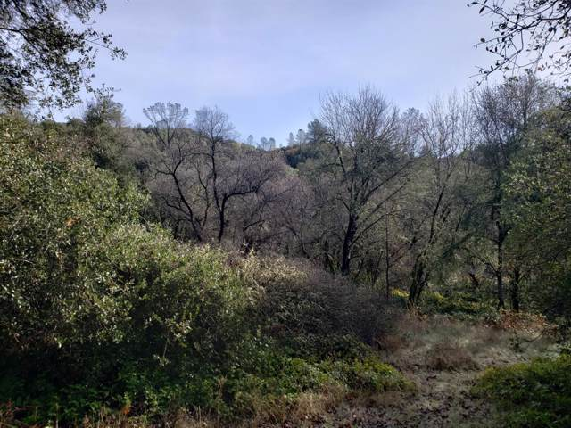 27-AC Far Star Trail, El Dorado, CA 95619 (MLS #19080644) :: The Merlino Home Team