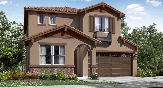 10241 Baritone Way, Elk Grove, CA 95757 (MLS #19080894) :: Keller Williams Realty