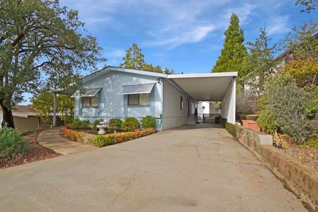 14074 Irishtown Road #31, Pine Grove, CA 95665 (MLS #19080981) :: Dominic Brandon and Team