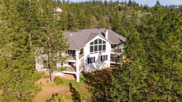 14270 Dapple Drive, Pine Grove, CA 95665 (MLS #19081204) :: The Merlino Home Team