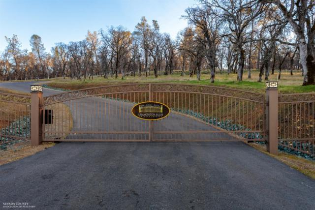 0 Hammonton Bluff Parcel 9 Drive, Smartsville, CA 95977 (MLS #19600709) :: eXp Realty - Tom Daves