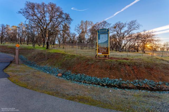 0 Hammonton Bluff Parcel 3 Drive, Smartsville, CA 95977 (MLS #19600730) :: eXp Realty - Tom Daves
