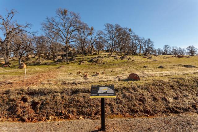 0 Hammonton Bluff Parcel 7 Drive, Smartsville, CA 95977 (MLS #19600761) :: eXp Realty - Tom Daves