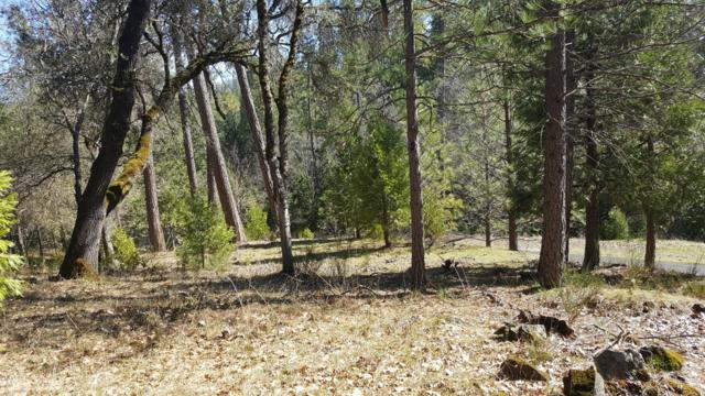 12506 Discovery Way, Nevada City, CA 95959 (MLS #19600957) :: REMAX Executive