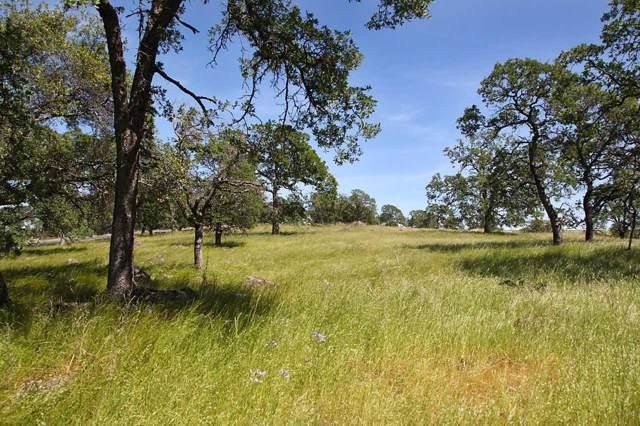 1000 Creekside Lane, Loomis, CA 95650 (MLS #20000002) :: Keller Williams - The Rachel Adams Lee Group