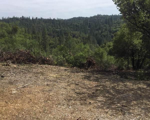 14190 Shake Ridge, Sutter Creek, CA 95685 (MLS #20000307) :: Heidi Phong Real Estate Team