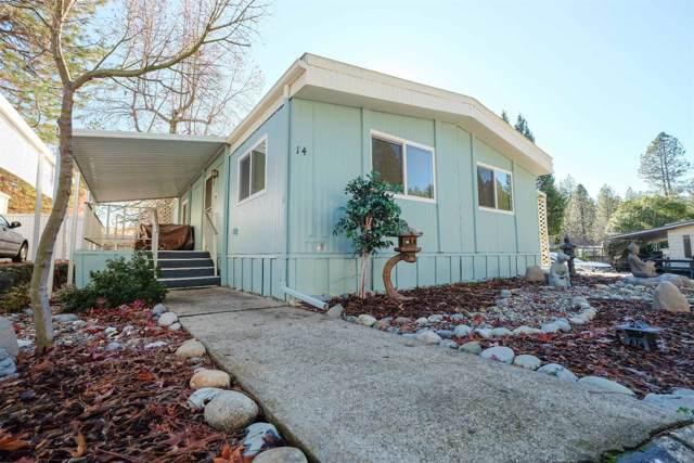14 Primrose Lane, Grass Valley, CA 95945 (MLS #20000340) :: Keller Williams - The Rachel Adams Lee Group