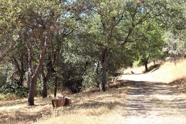 11008 Old Pond Lane, Grass Valley, CA 95949 (MLS #20000625) :: REMAX Executive