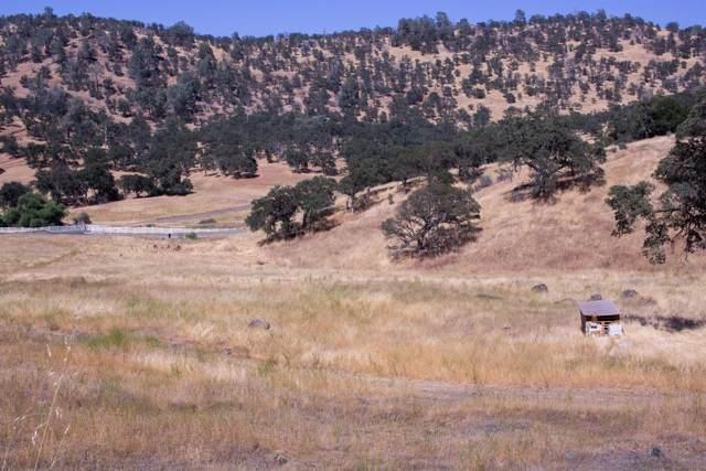 2495 Pepito Drive, La Grange, CA 95329 (MLS #20000687) :: Keller Williams - The Rachel Adams Lee Group