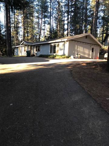 6189 Shady Acres Drive, Placerville, CA 95667 (MLS #20000848) :: Folsom Realty