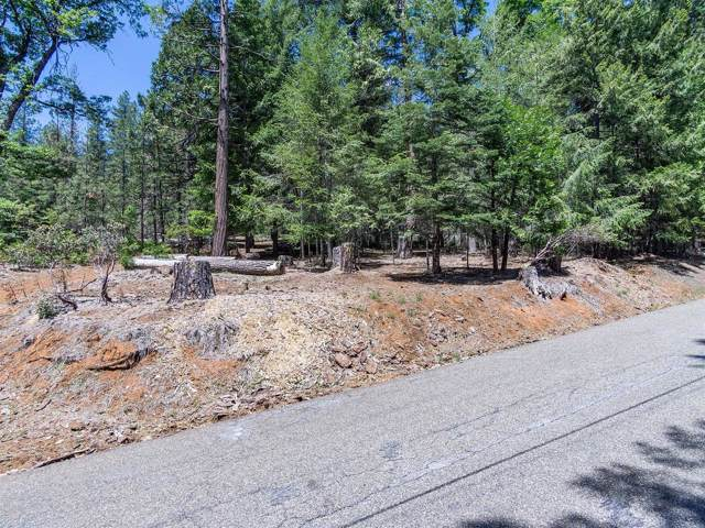 5147 Mt Pleasant Drive, Grizzly Flats, CA 95636 (MLS #20001171) :: Folsom Realty