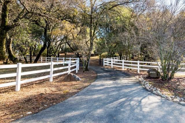 4409 Holly Drive, Shingle Springs, CA 95682 (MLS #20001604) :: Keller Williams - Rachel Adams Group